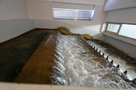 Antavilių vandenvietė