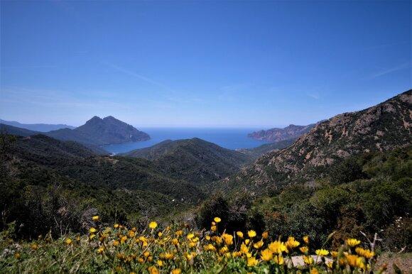 Kelionė į pietinę Korsikos dalį