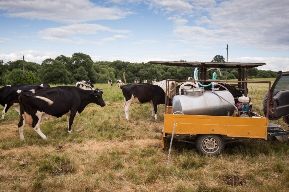 Jau skinami gaisro Alytuje vaisiai: dėl aštuonis kartus padidėjusių dioksinų kiekio uždrausta naudoti pieną iš 25 vietovių