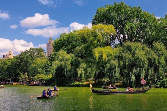 Romantiškas pasiirstymas valtele Centrinio parko tvenkinyje