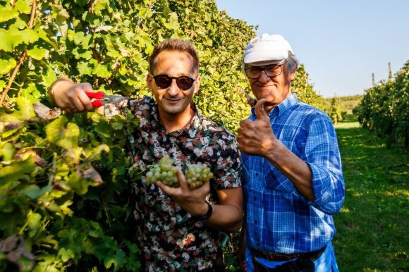 Vynuogyno paveldėtojas iš Italijos žmonos ieškos Lietuvoje, bet kol kas tam neturi pinigų