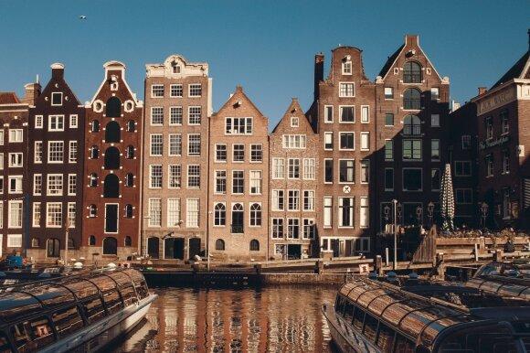 Miestas, kuriame turtai demonstruojami namų langų dydžiu