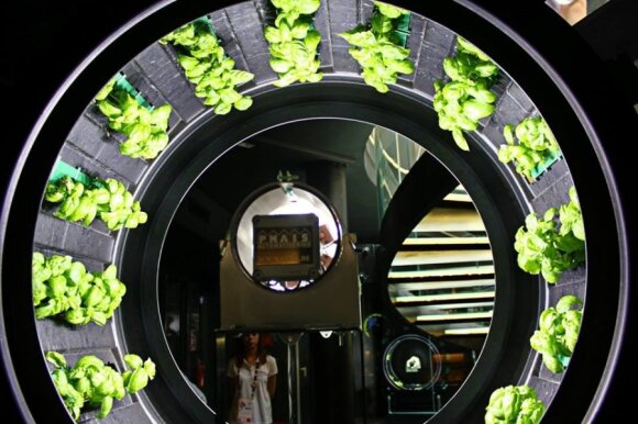 """Įspūdžiai iš pasaulinės """"EXPO 2015"""" parodos: vienos dienos neužtenka"""