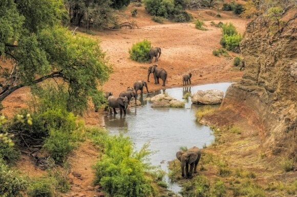 Kriugerio nacionalinis parkas, Pietų Afrikos Respublika