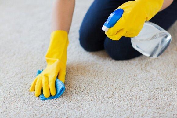 Kaip tvarkyti namus efektyviau: 9 valymo priemonės, būtinos kiekvienuose namuose