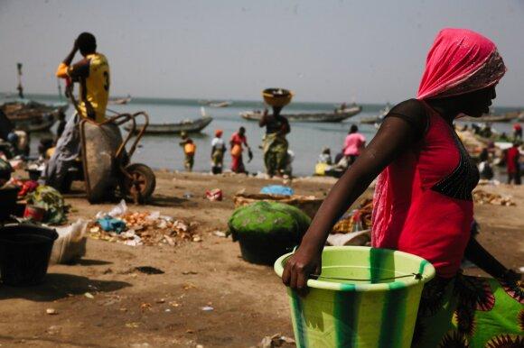 За коронавирусом идут потоп, засуха и голод. Прогнозы на 2020 год становятся все мрачнее