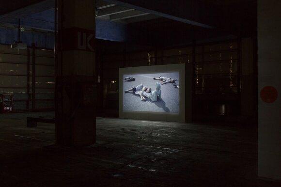 Eglė Budvytytė. Filmas -   Komposto dainos mutuojantys kūnai, yrančios žvaigždės.