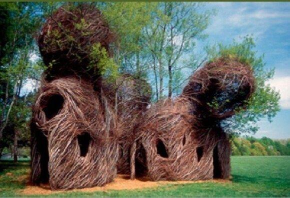 Namai, suformuoti iš medžių šakų/ G. Klimavičiaus pristatymo skaidrės