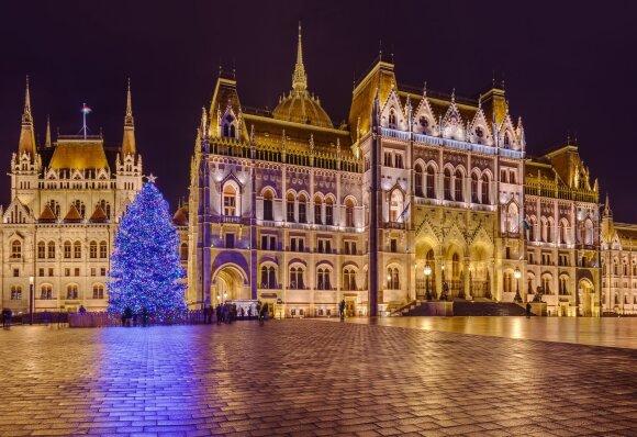 Kalėdų eglė Budapešte