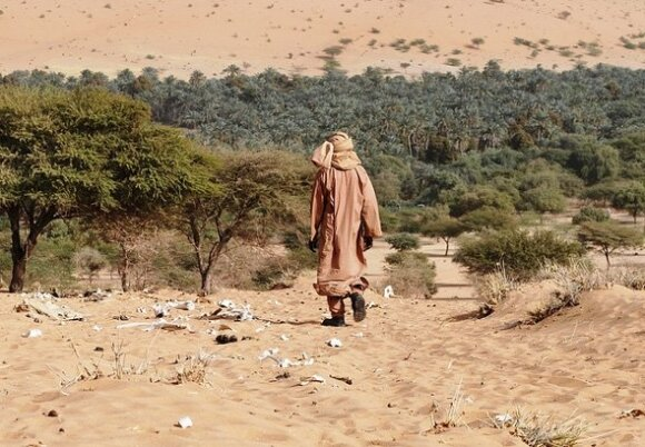 Vienintelė Afrikos viltis – Didžioji žalioji siena