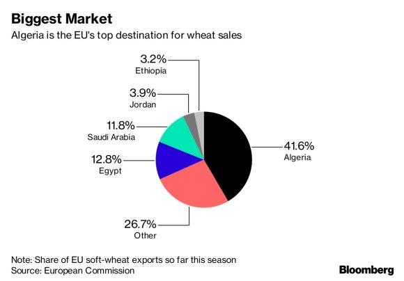 ES grūdų eksportas / Bloomberg inf.