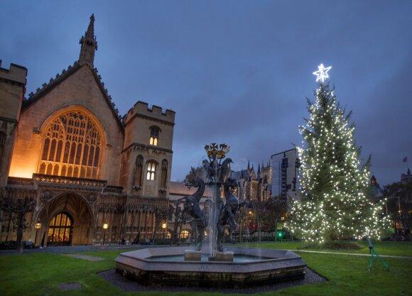 Vestminsterio Kalėdų eglė Londone