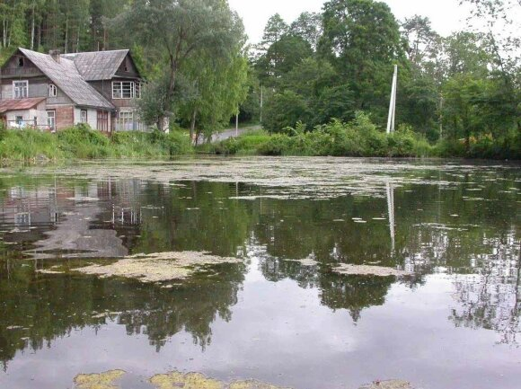 Užpelkėję ežerai