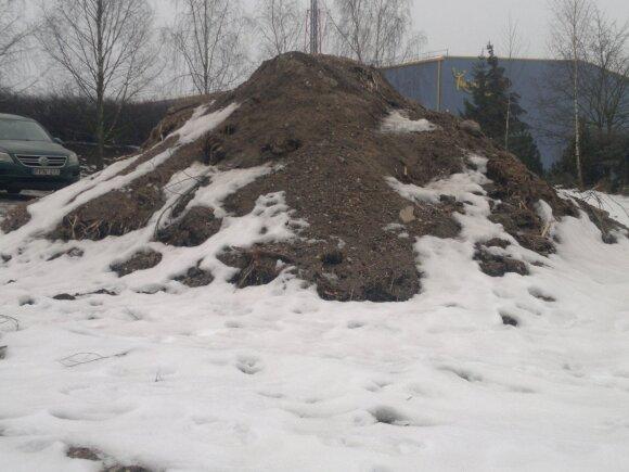 Sunaikinta Gineitiškių ežero pelkė