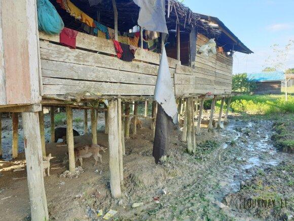 Lietuvis stebėjo neįtikėtiną džiunglėse gyvenančios genties kasdienybę: tai pats šlykščiausias mano matytas kaimas
