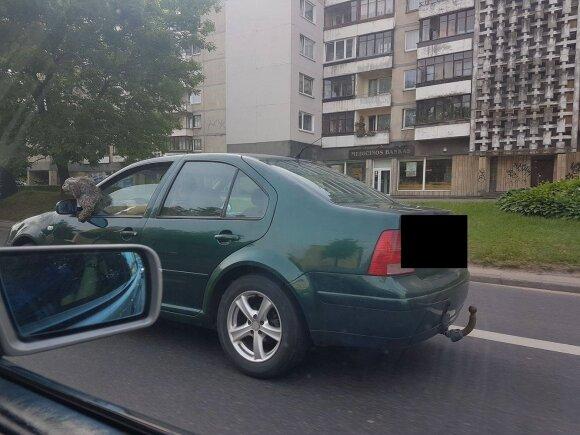 Vilnietę įsiutino vairuotojo elgesys