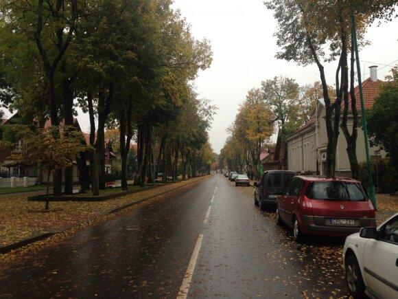 Vytauto gatvė Palangoje