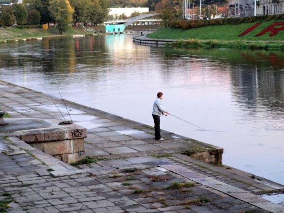 Lašišų žvejyba Neryje pire Žaliojo tilto