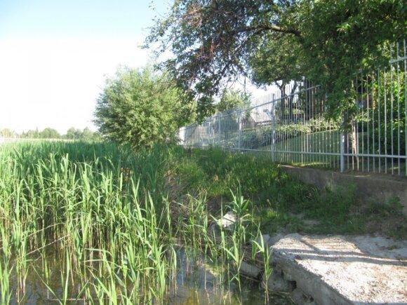 Būsimojo Vilkaviškio ligoninės direktoriaus tvora yra per arti ežero