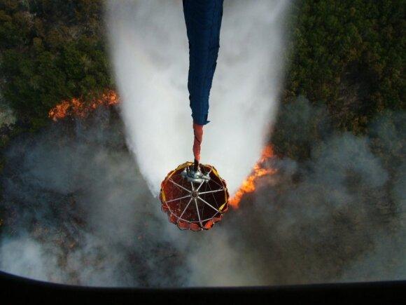 Огромный пожар на Куршской косе: сгорело 60 га леса