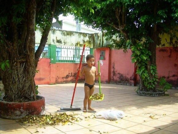 Vito Kiaušo auginamas brazilas