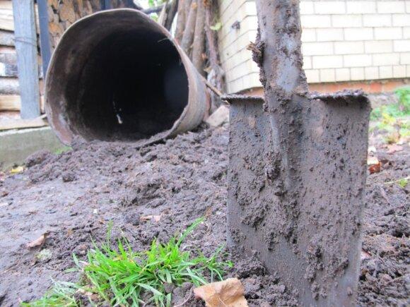 Po dviejų metų kompostavimo gaunamos žemės patręšia daržą