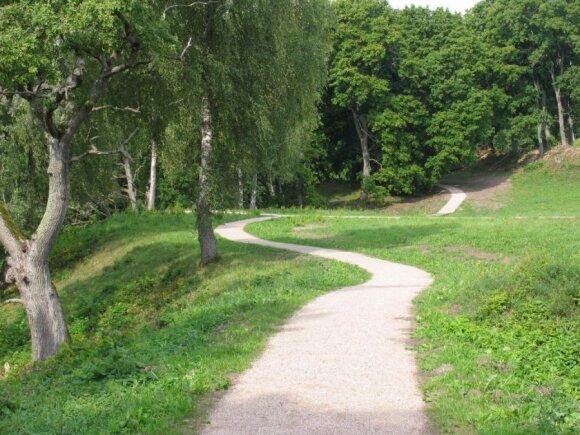 <strong>Asvejos regioninis parkas.</strong> Dubingių piliavietė
