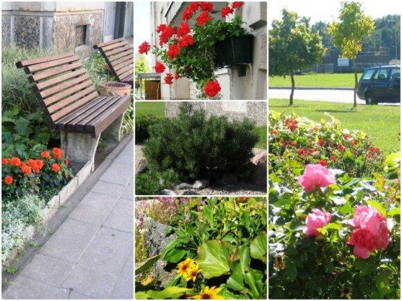 Geriausios aplinkoDaugiabučio namo kiemas, Pavenčių g. 31 Mažeikiuoses konkursas