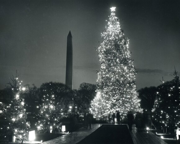 Vašingtono eglutė 1956 m.