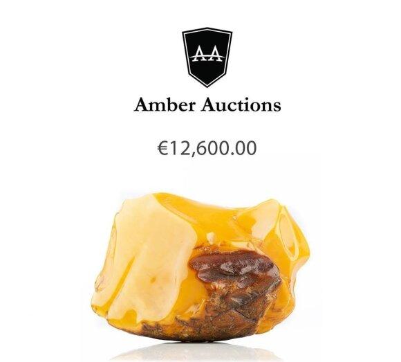 Gintaro aukcionas