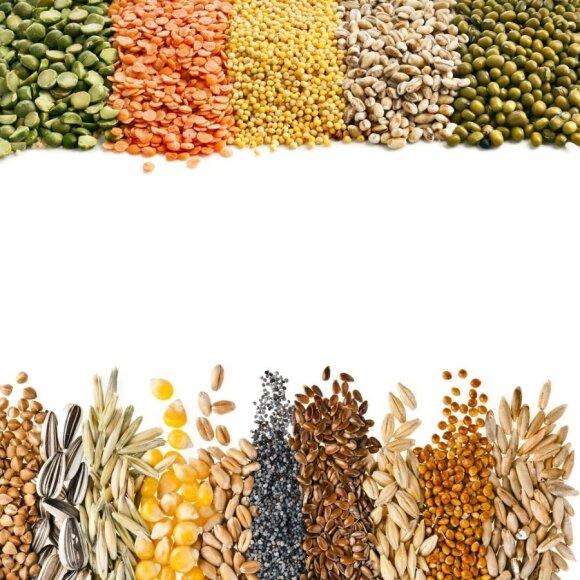 10 kalorijas deginančių maisto produktų