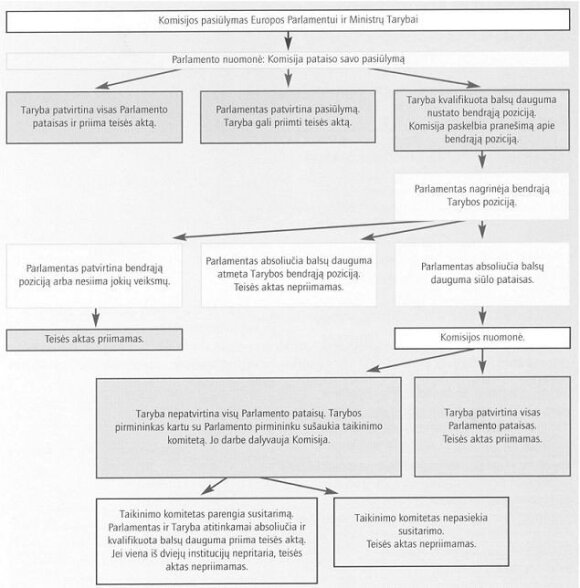 ES sprendimų priėmimo schema