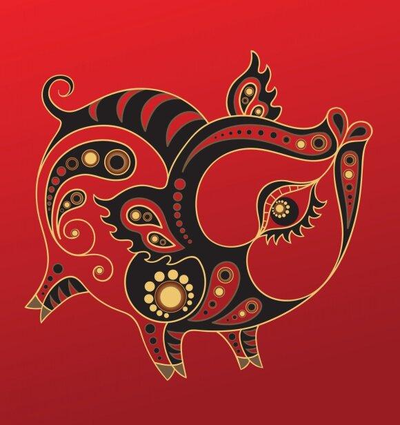Kinų horoskopas 2019-iems: kas mūsų laukia Kiaulės metais?
