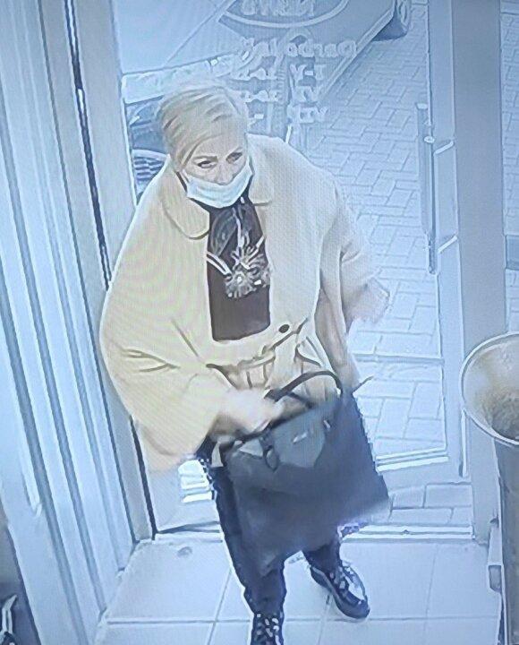 Antikvariato parduotuvėje šneki moteris, įtariama, pavogė senovinę pitbulio skulptūrą
