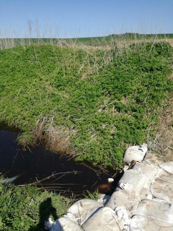 Nemunėlio upė