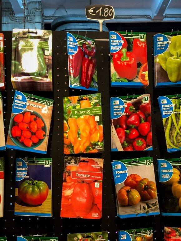 13 daržovių, uogų ir gėlių, kurių sėklas galima daiginti žiemos pabaigoje
