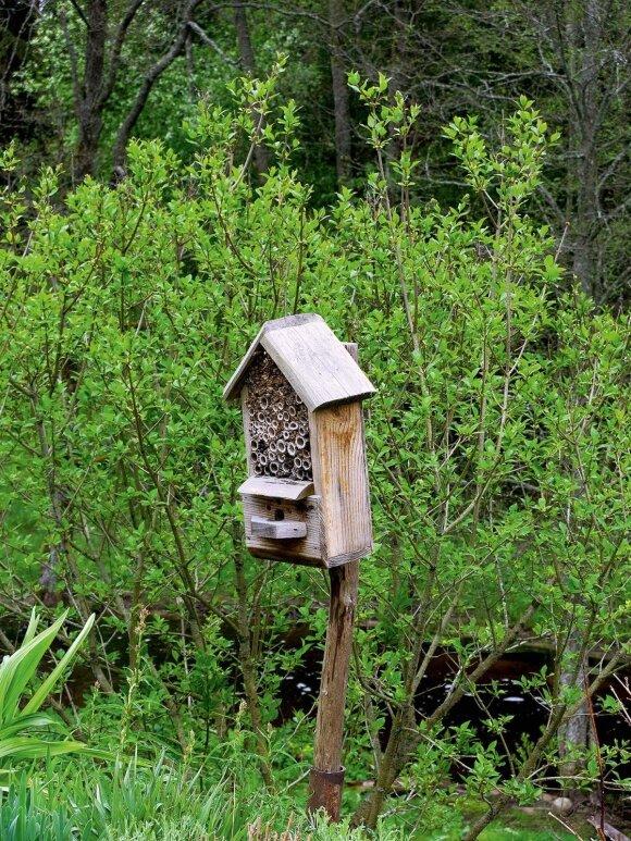 Vabzdžių namelis prie Šlyninkos malūno