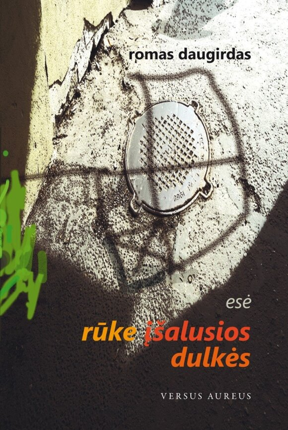 R. Daugirdo knygos viršelis