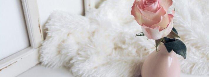Belaukiant pavasario – kaip puošti namus žiemą po švenčių