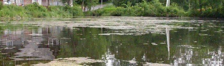 Ežerai, ežerų valymas