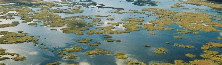 Žuvinto rezervatas