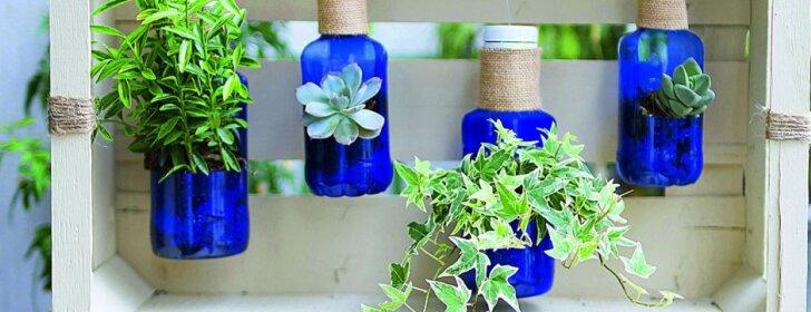 Kūrybiškas sprendimas: ką galima sumeistrauti pasitelkus plastikinį butelį ir vertikalųjį apželdinimą