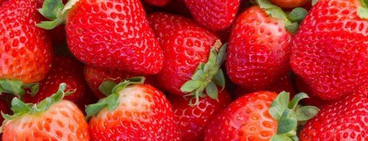 Braškių sodinimo ypatumai: kaip sėti ir, kokias veisles pasirinkti, kad derlius būtų gausus?