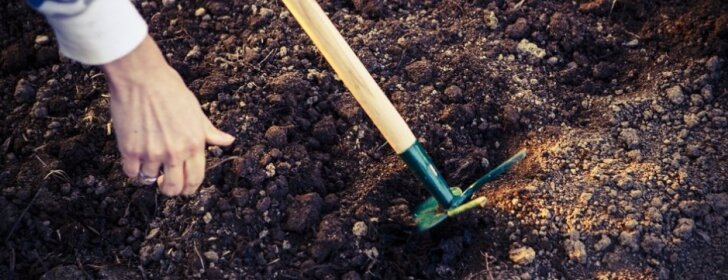 """Konkurso """"Sodo, daržo ir gėlyno auginimo gudrybės"""" nugalėtojai"""