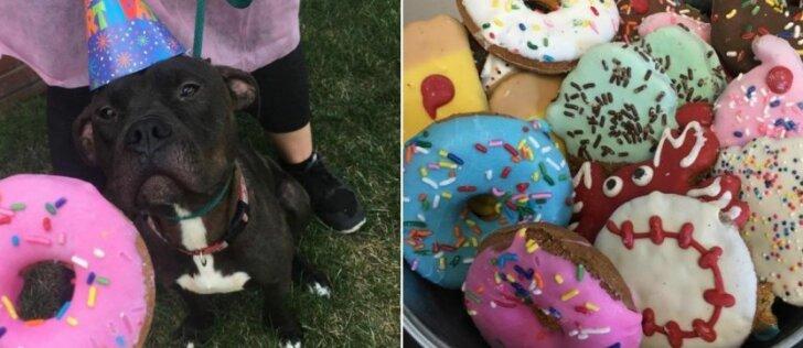 Vienišiems prieglaudos šunims surengė šventę: lepino ypatingais skanėstais