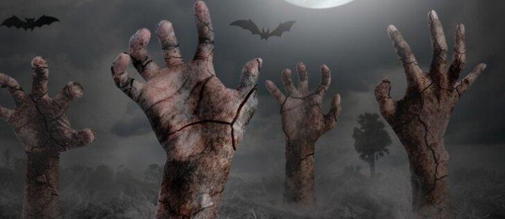 Zombių apokalipsė: kiek planetoje liktų gyvųjų po šimto dienų?