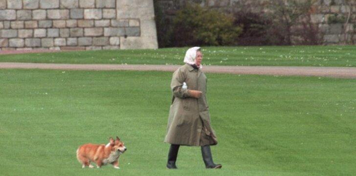 Karalienė Elžbieta II ir jos korgis