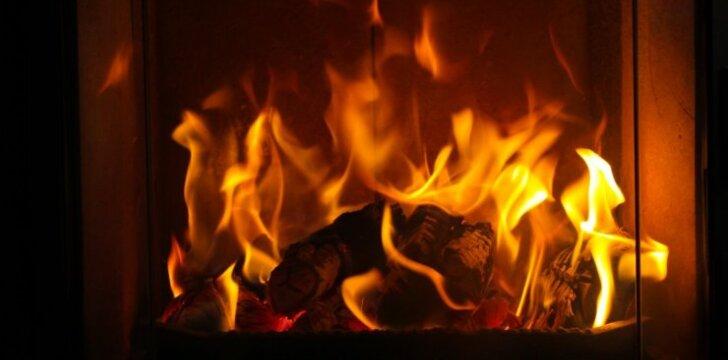 Ką rinktis namų ugniai: židinį ar krosnelę?
