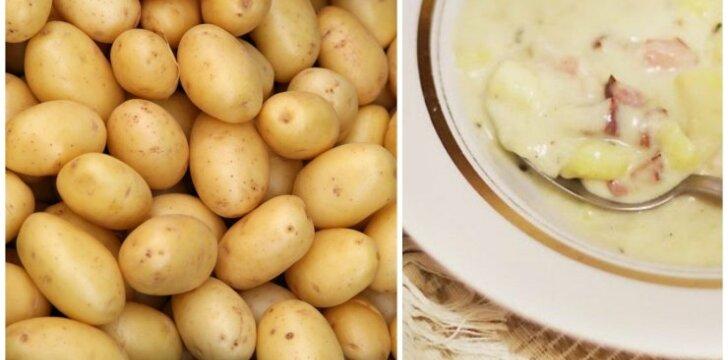 SOTU IR SKANU: naminė bulvienė