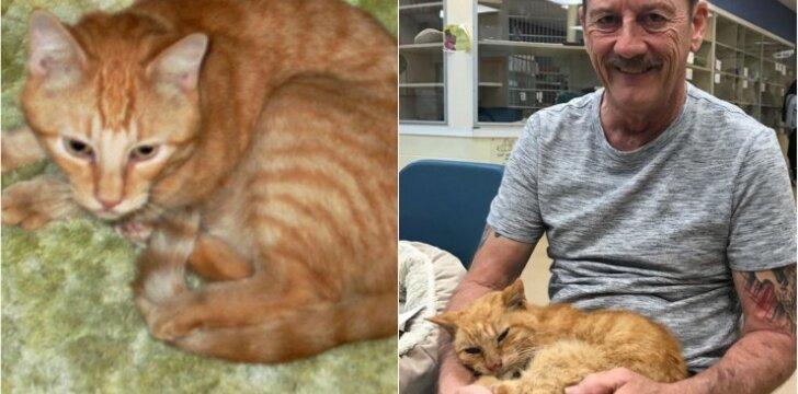 14 metų dingęs katinas pagaliau grįžo namo